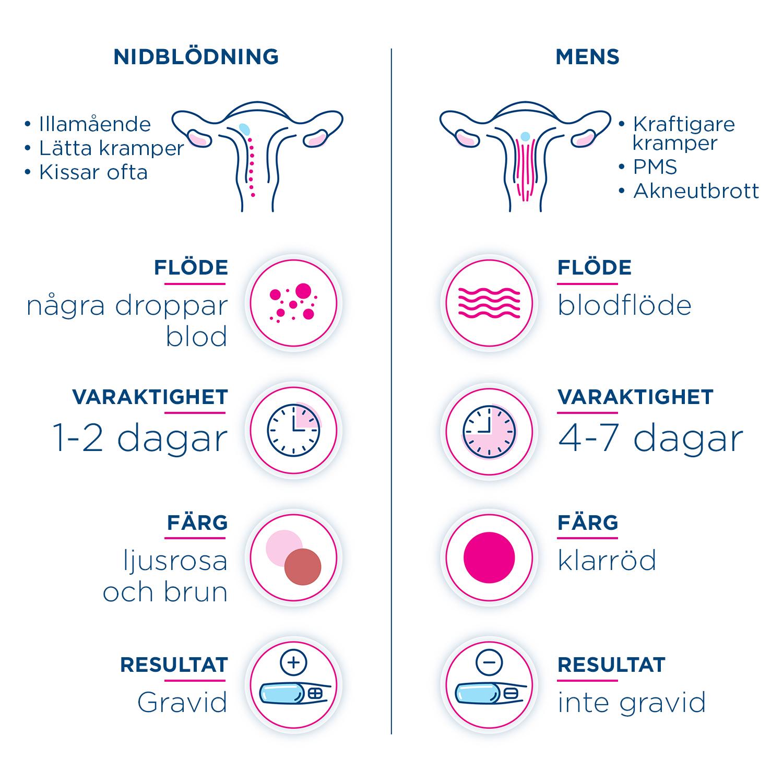 mens en vecka för tidigt gravid