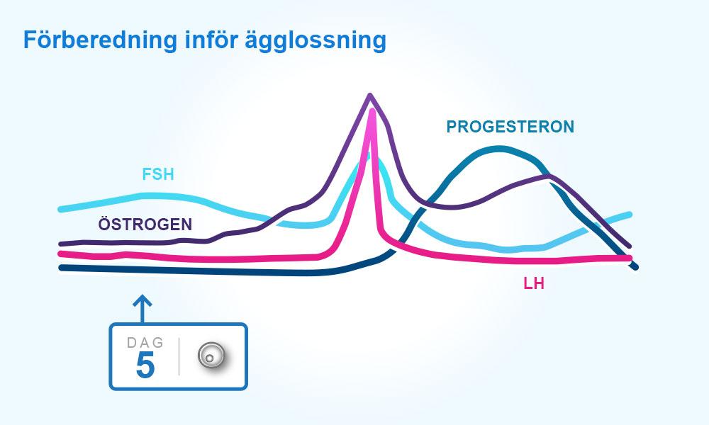 lågt progesteron gravid