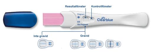 hur fungerar graviditetstest