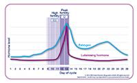 menstruationscykeln dag för dag